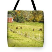 Cows Grazing On Grass In Farm Field Fall Maine Tote Bag