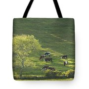 Cows On Hillside Summer In Maine Tote Bag