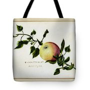 Coxs Apple 1922 Tote Bag