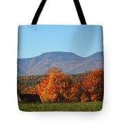 Coxsackie New York State Tote Bag