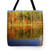 Coxsackie Reflection Tote Bag