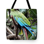 Coy Parrot Tote Bag