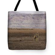 Coyote Badlands National Park Tote Bag