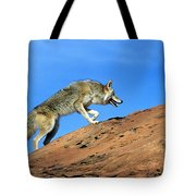 Coyote Climbs Mountain Tote Bag