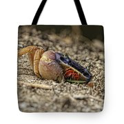 Crab Anyone Tote Bag