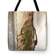 Crack In The Wall Tote Bag