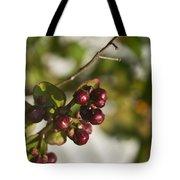 Crape Myrtle Fruit Tote Bag