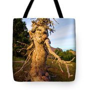 Crater Lake Kachina Tote Bag