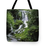 Crawfordsburn Country Park, Co Down Tote Bag