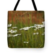 Crazy Lazy Oxeye Daisies Tote Bag