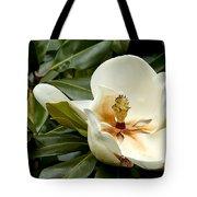 Creamy Magnolia Tote Bag