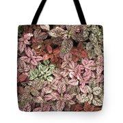Creative Hues Of Mother Nature Tote Bag