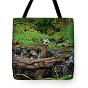 Creek End Tote Bag