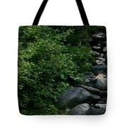 Creek Flow Panel 1 Tote Bag