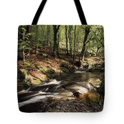Creek In Woods, Cloughleagh, County Tote Bag