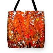 Crepe Myrtle Leaves In Autumn Tote Bag