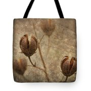 Crepe Myrtle Seed Pods With Grunge And Textures Tote Bag