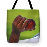 Cricket Anyone Tote Bag