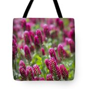 Crimson Clover In All Its Glory Tote Bag