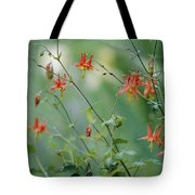 Crimson Columbines Aquilegia Formosa Tote Bag
