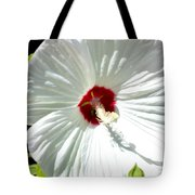 Crimson Stained Tote Bag