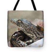 Crocodile And Alligator Breeding Farm  Tote Bag