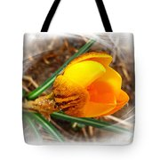 Crocus Gold Two Tote Bag