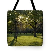 Cross In The Trees Tote Bag by John Bowers