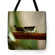 Crossing The Ravine Tote Bag