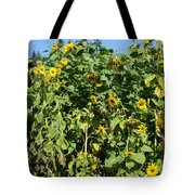 Crows In The Sunflowers Tote Bag