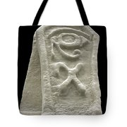 Cryptic Egypt Snow Tote Bag
