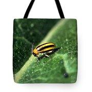 Cucumber Beetle Tote Bag