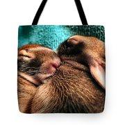 Cuddles Tote Bag