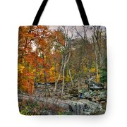 Cunningham Falls Viewing Platforms Tote Bag