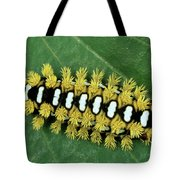 Cup Moth Limacodidae Caterpillar On Leaf Tote Bag