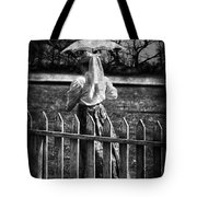 Curious Catey  Tote Bag