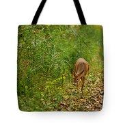 Curious Doe 9838 Tote Bag