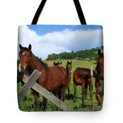 Curious Horses In Summer Tote Bag
