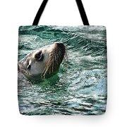 Curious V4 Tote Bag