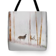 Curious Visitors Tote Bag