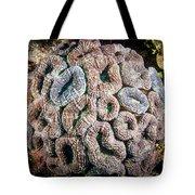 Curler Coral Tote Bag
