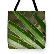 Curling Shadows Tote Bag