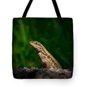 Curlytail Tote Bag