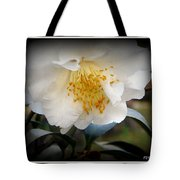 Curtsy Tote Bag