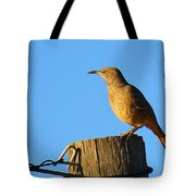 Curved Billed Thrasher Sitting On A Post Tote Bag