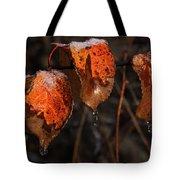 Cusp Of The Seasons Tote Bag