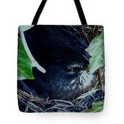 Cute Black Bird Mum Watching Over Her Eggs In Her Nest Tote Bag