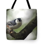 Cute Face Nuthatch Tote Bag
