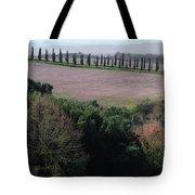 Cypress Allee Tote Bag