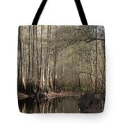 Cypress And Water Tote Bag